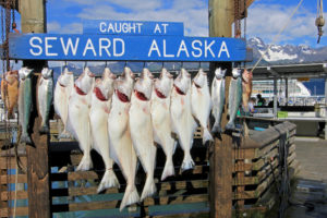 alaska fishing adventures