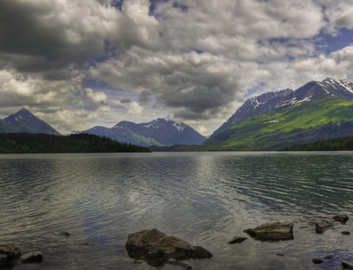 5 Unique Things to Do in Moose Pass, Alaska