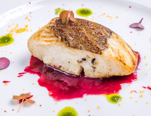 Lean, Tender, and Delectable: Top 25 Alaskan Halibut Recipes