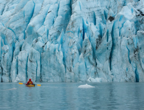 Kenai Fjords Kayaking: A Genuinely Life-Changing Experience